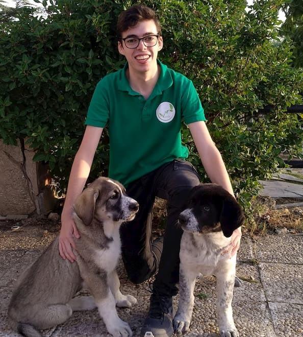 Alejandro con los perritos de la familia